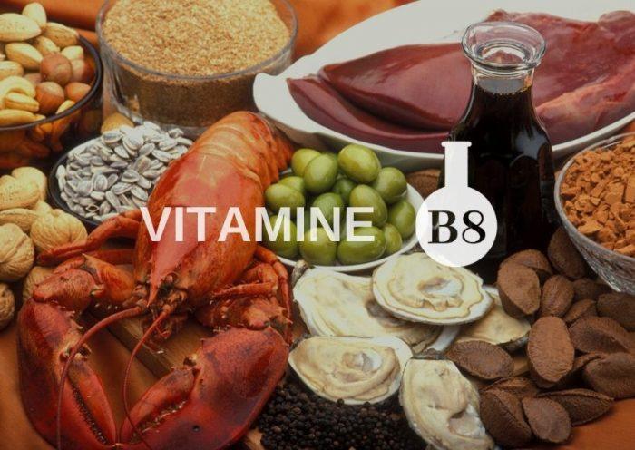 Aliments qui contiennent de la vitamine B (foie, huitres, noix, homard, etc.)